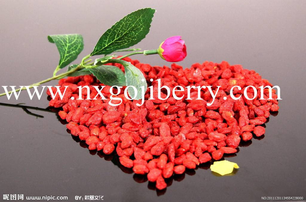 Dried Goji Berry Supply from Ningxia, China