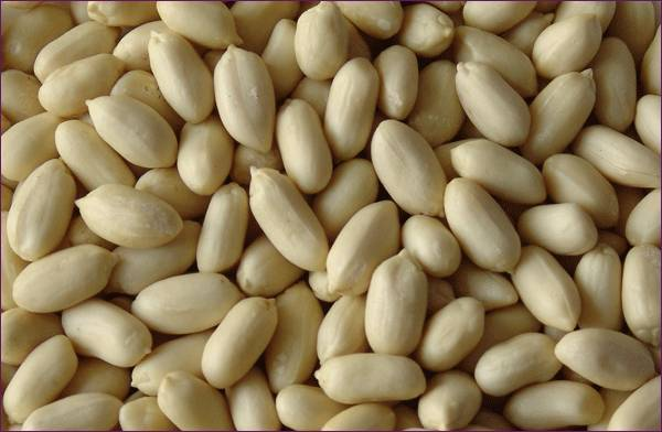 Blanched peanut kernels, blanched peanut from china