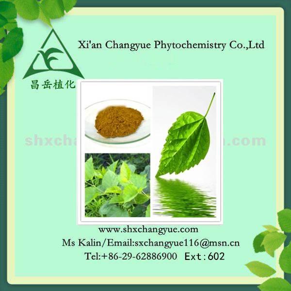 Natural 1%-98% 1-Deoxynojirimycin (DNJ) powder