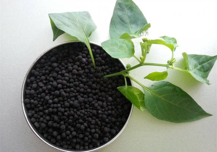 Humic Acid Granular from china good quality best price