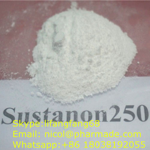 Anabolic Steroid Sustanon 250 Powder Testosterone Blend Powder