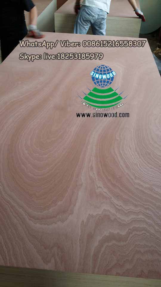 Sapelli rotary cut veneered plywood