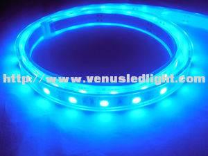 IP68 Waterrpoof 5050 White 300 LED High Power Strip Light for Swimming pool
