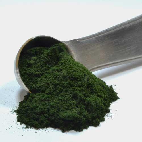 Organic Chlorella Powder 50%