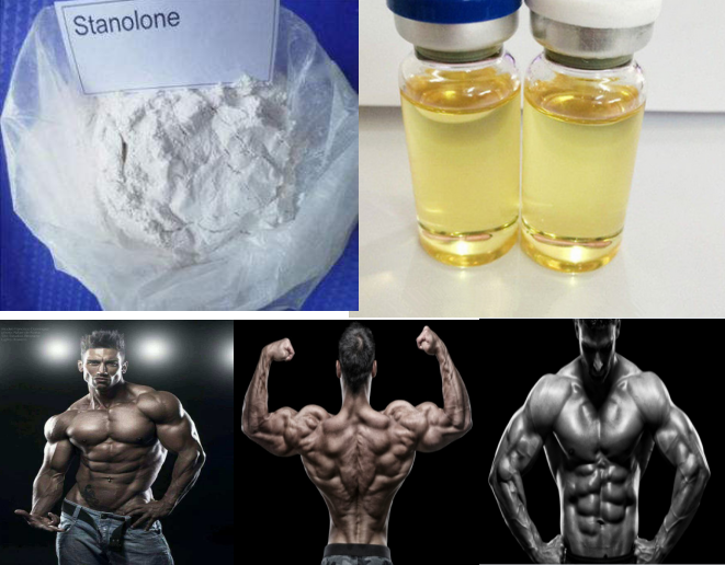 99.0% high purity Stanolone/Androstanolone powder for muscle building steroid anabolic