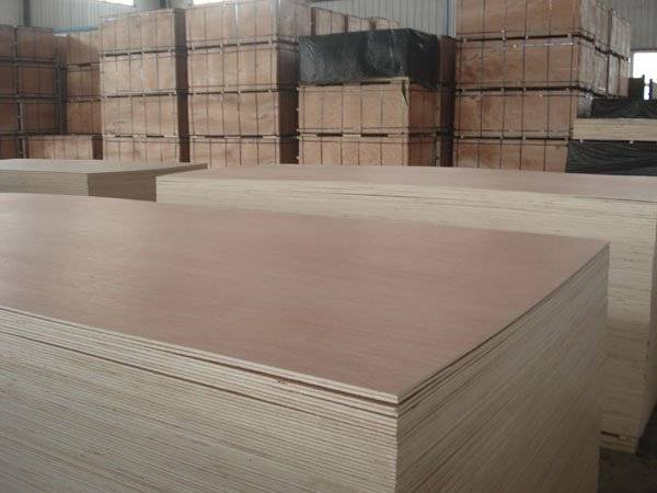 Good quality cheap plywood for sale 009
