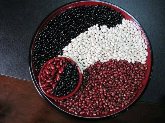 New Crop White Kidney Beans/Red beans/Black beans/Haricot