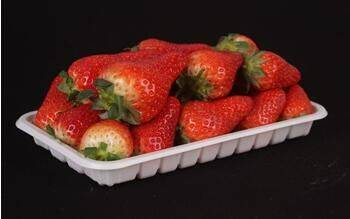 fruit Plastic tray