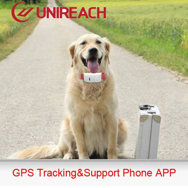 GPS tracker for your pet friend