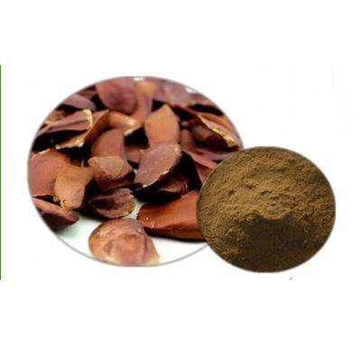 100% pure natural Sky fruit extract powder/Fructus Swietenia Macrophylla