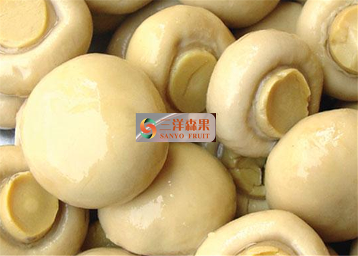 Organic High Grade Canned Pickled Mushroom With Rich Nutrition