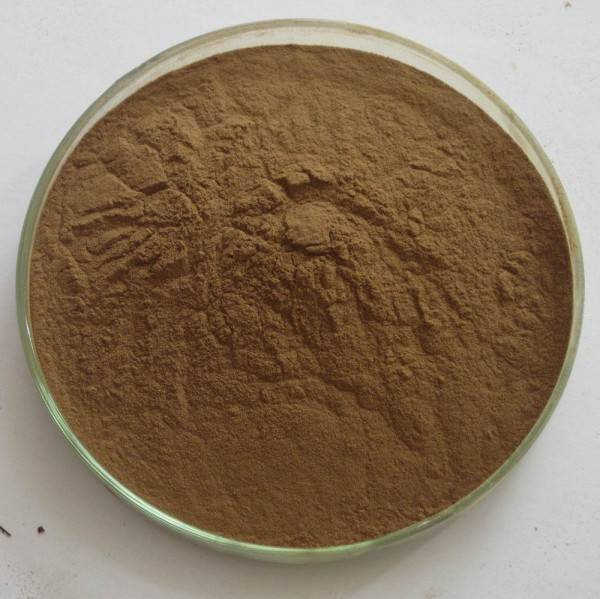 High quality Ashwagandha Extract powder for men's health