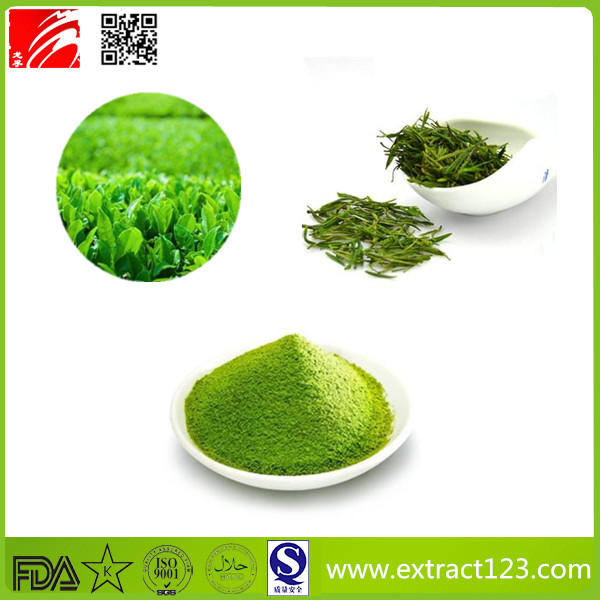 High Quality Matcha Tea Powder