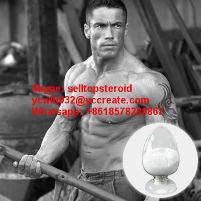 Anabolic Steroid Letrozole Femara High Purity Steroid Powder Femara Letrozole