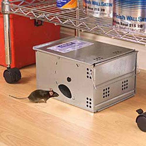 Rats, Mice catch all trap box—needless bait