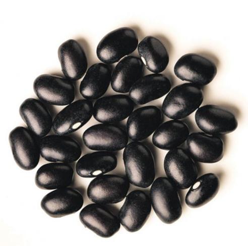 100% Natural Black Kidney Bean Wholesale Price Dried Kidney Bean