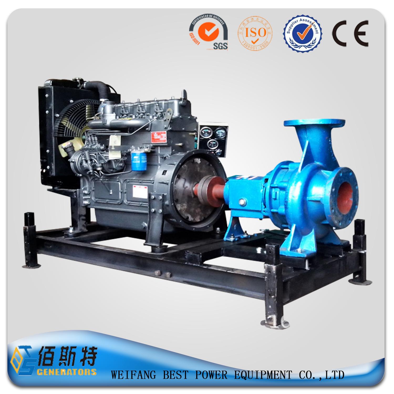 Diesel pump set with Ricardo series diesel engine