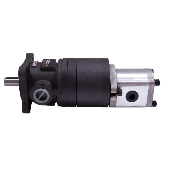 Hi-Lo Combined Pump