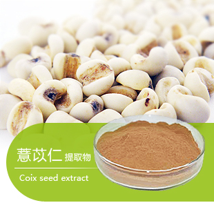 Natural Coix Seed Extract Powder