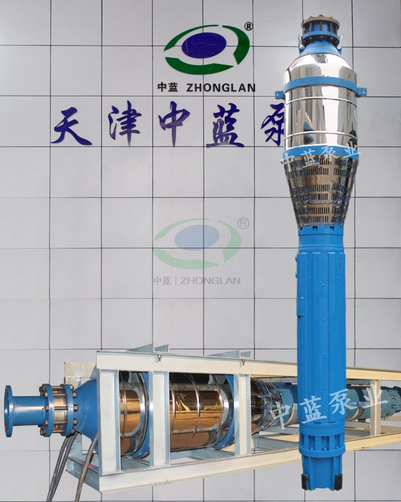 Submersible pumps for iron ore