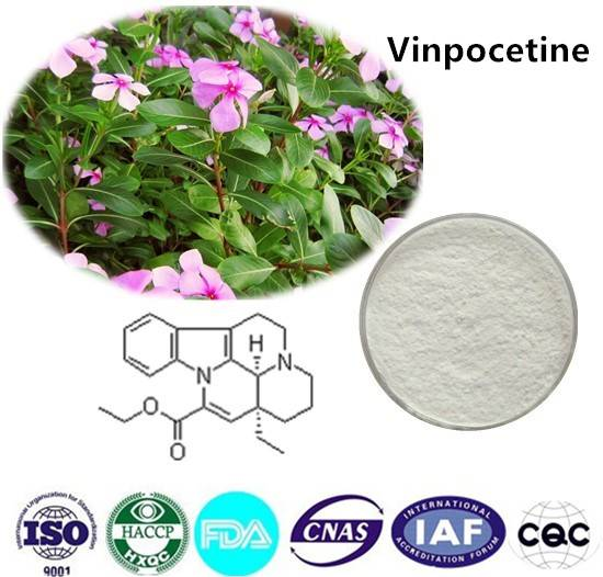 Vinpocetine  98% HPLC CAS NO:42971-09-5 10g/bag