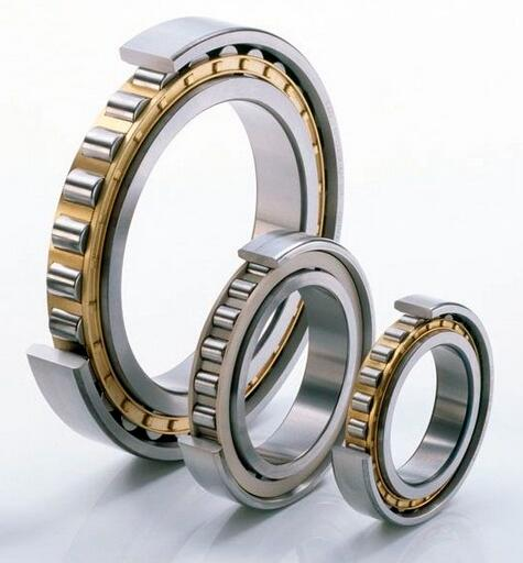 NU203~NU244 17mm~ 75mm Cylindrical Roller Bearings