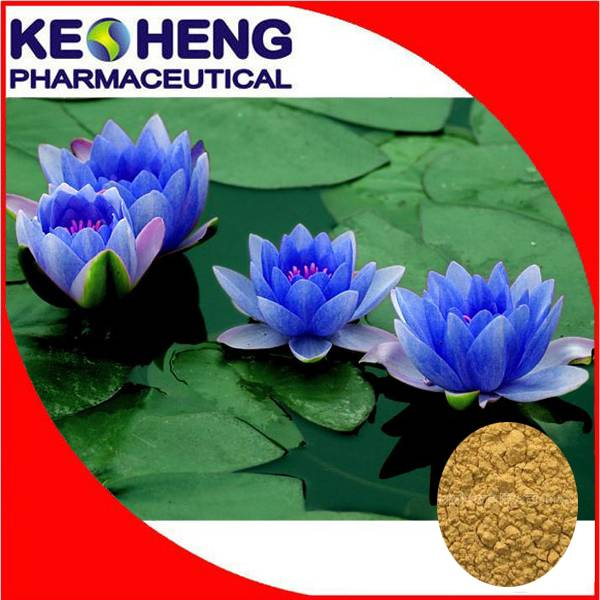 Blue lotus extract 2% Nuciferine by HPLC