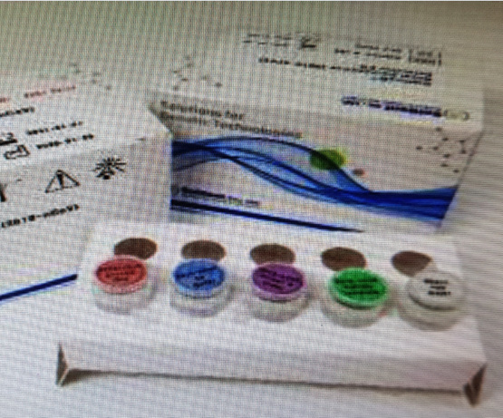 DiaPlexQ Novel Coronavirus(2019-nCoV) detection kit