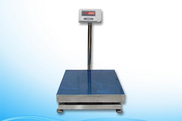 High Precision Platform Scale