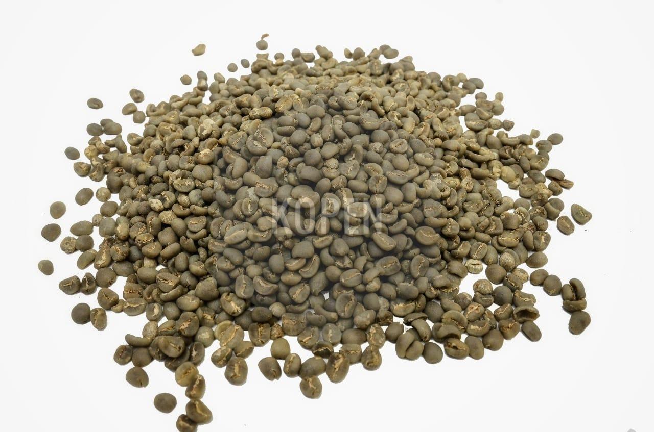 High Quality Gayo Arabica G-1 Green Coffee Bean