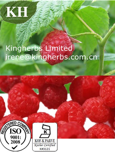 Ellagic Acid-Rasberry Extract