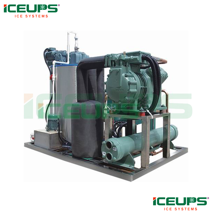 Salt water flake ice machine for seafood