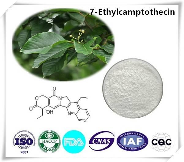 7-Ethylcamptothecin 98% Cas number:78287-27-1 10g/bag