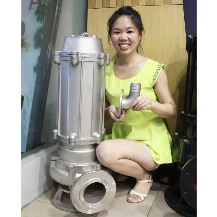 Stainless steel WQP Series submersible sewage pump