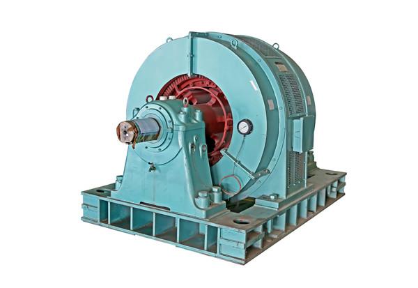 Tdmk Three-Phase High Voltage Electric Motor
