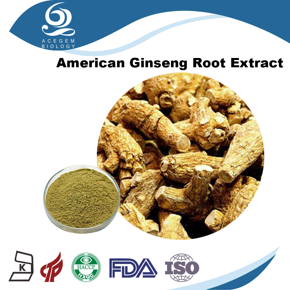 Organic American Ginseng Root Powder for Dietary Supplement