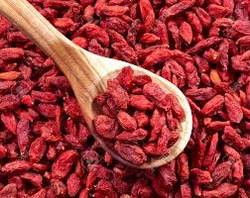 dried goji berry/organic goji berry for sale