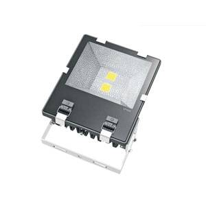 2X50W LED Flood Light