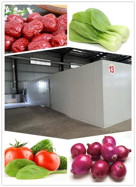 hot air fruit and vegetable dryer, dried fruit and vegetalbe dehydrator Machine