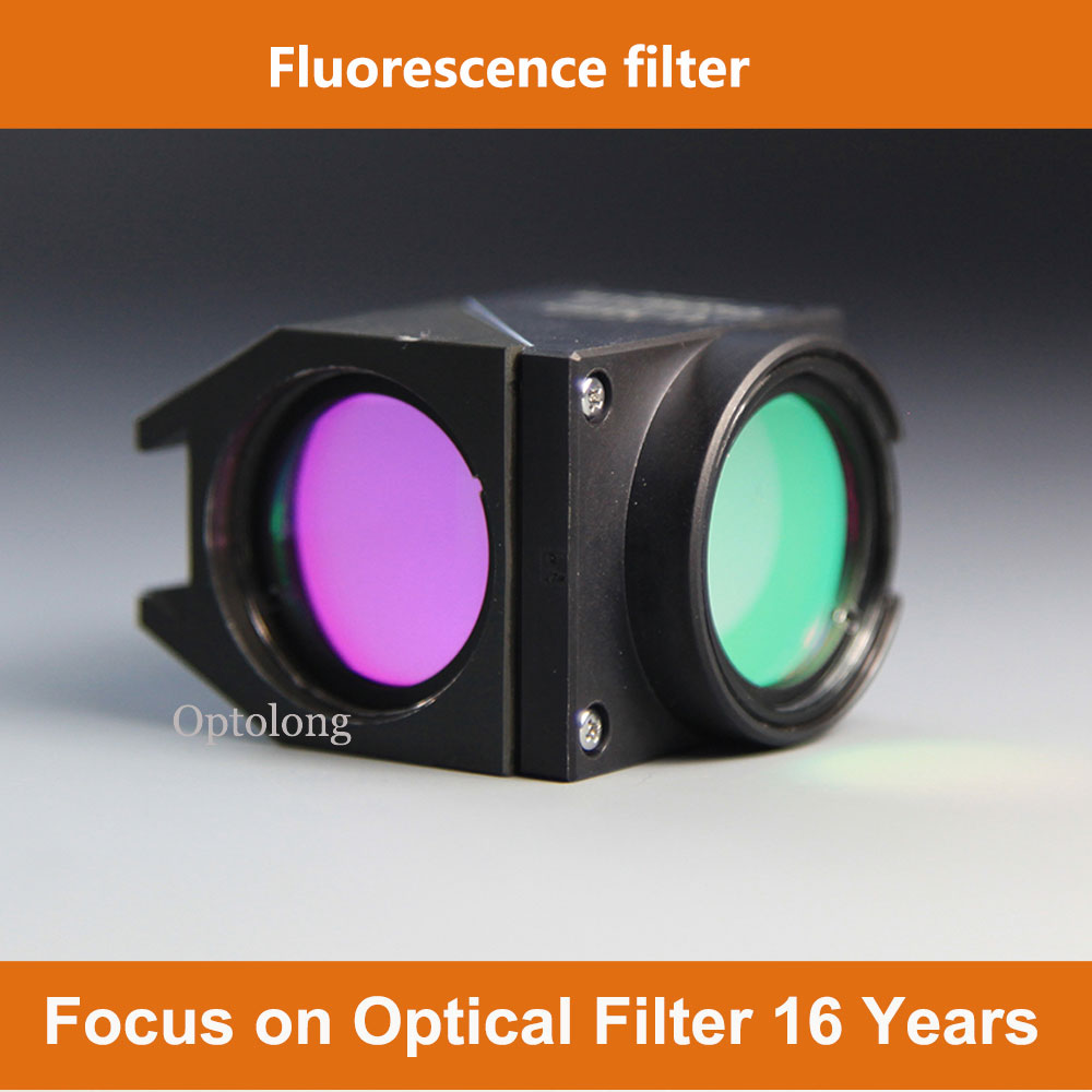 Fluorescence Cy3 imaging filter for fluorescence microscope