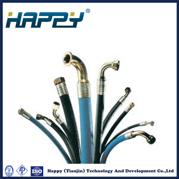Chinese Hydraulic Rubber Hose Assembly Pipe Fitting