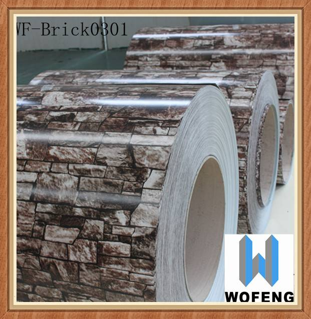 coated PPGI steel coil