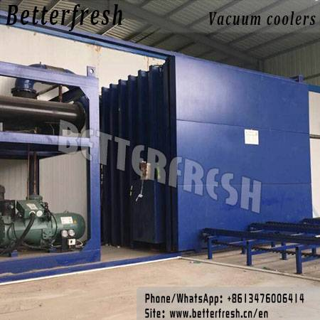 Betterfresh Unique Process Cooling system Vacuum Cooler with Short time suitable temperature for Fre