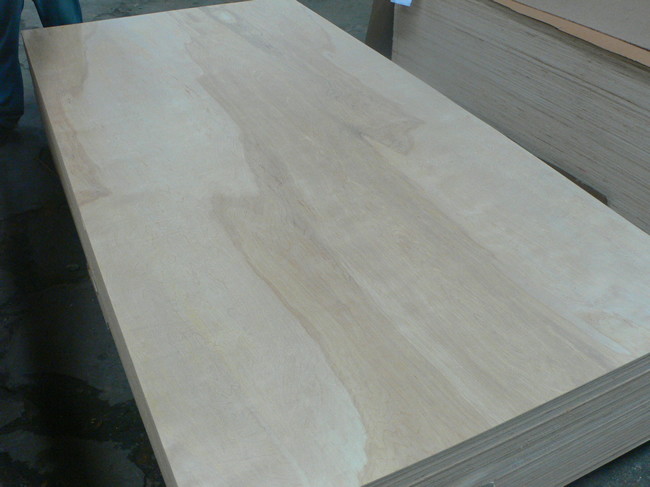 poplar core commercial plywood for furniture