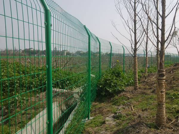 Plastic Coated 3D Wire Mesh Fence