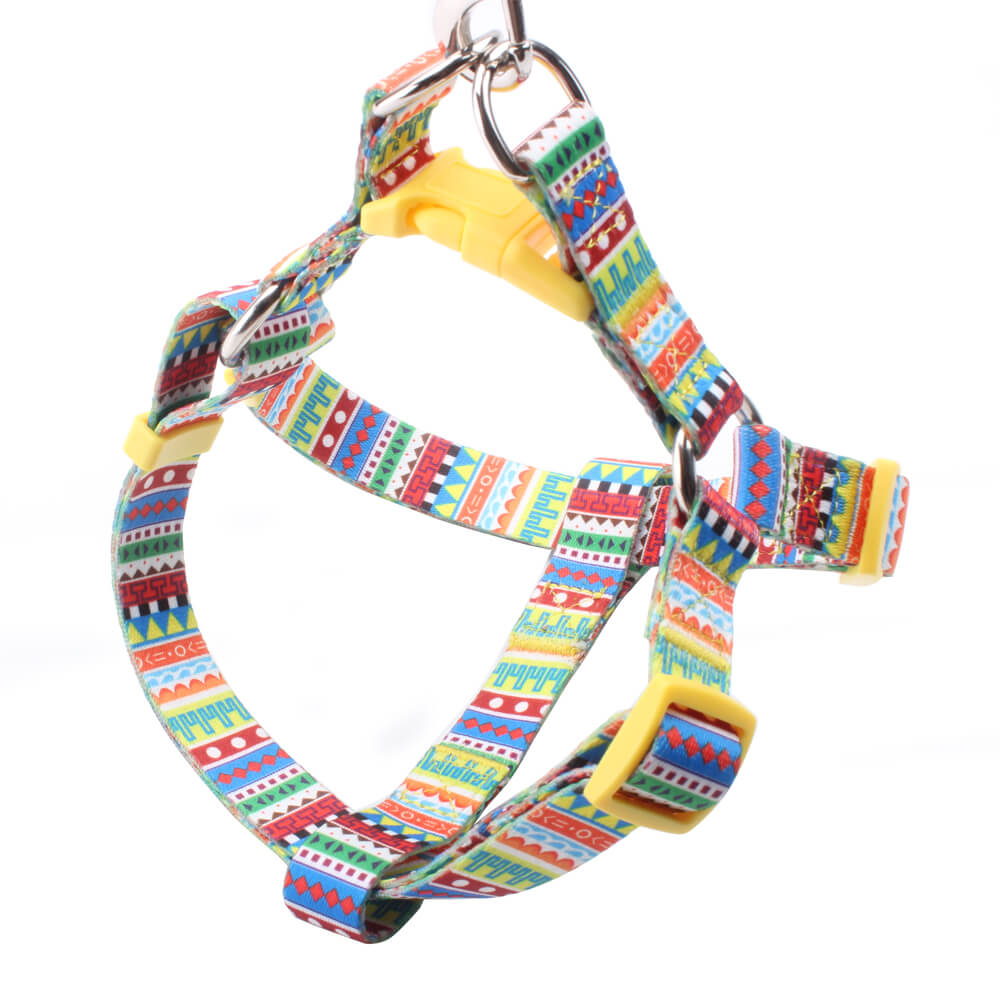 Dog Harness: Popular dog harness supplier with rainbow logo