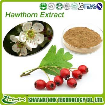 Manufacture Directly supply Hawthorn extract by 2%-10% Flavones