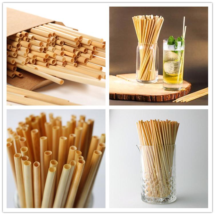 Eco straws wholesale