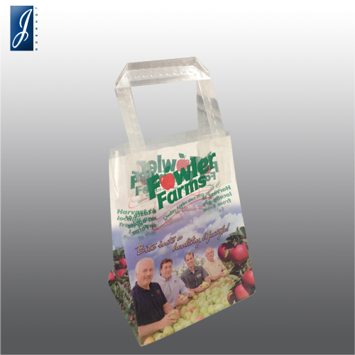 Customized small plastic gift bag for FOWLER