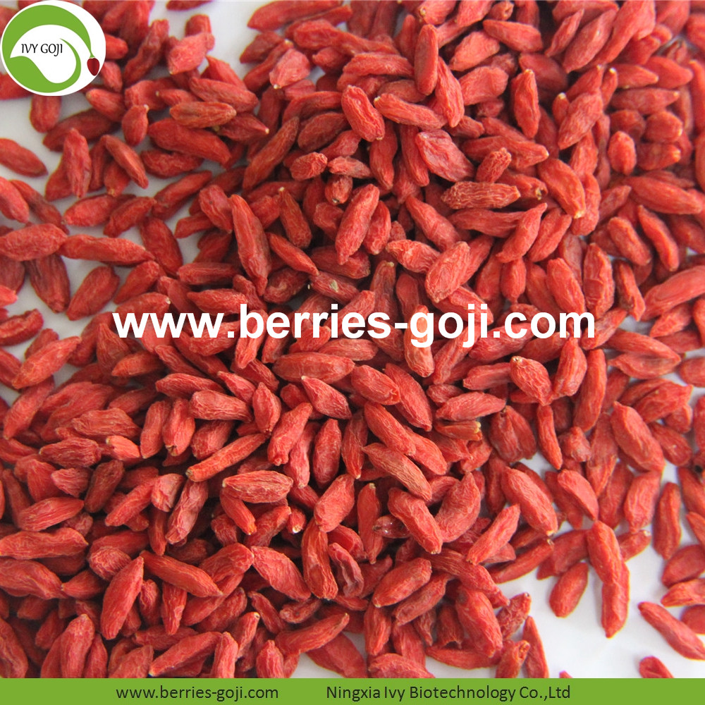 Factory supply wholsesale dried wolfberry